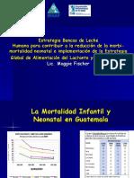 Banco Leche, Ops.ppt Web