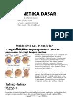 Genetika Hirzi Fathul Hakim Agt 14