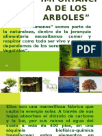 laimportanciadelosarboles-120530111144-phpapp02