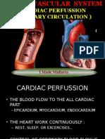 Day 7 Cardiac Perfussion Coronaria- Koroner