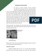 mahendra-agil-kusuma-o781141334.pdf