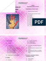 DOCUMENTO BASE SEGUNDA PARTE.pdf RENAP.pdf