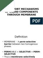Pp t Membrane