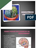 Hemisférios Cerebrais - Psicologia B (12º ano)
