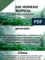 Bosque Húmedo Tropical Presentación