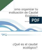 PPT Phabsim.pdf