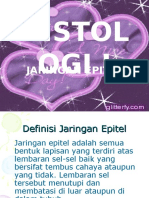 Histo (Pert.1)