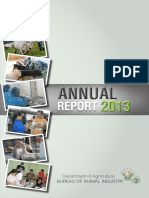 BAI Annual Report 2013