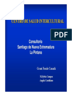 Experiencia en Salud la Pintana.pdf