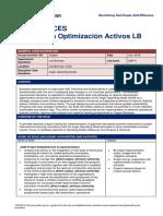 Role Profile Especialista Optimización Activos LB