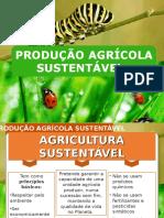produção agrícola sustentável