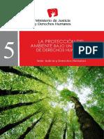 Protección del ambiente bajo el enfoque de los Derechos Humanos.pdf