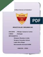 DIPTICO - MOLÉCULAS ORGÁNICAS.docx