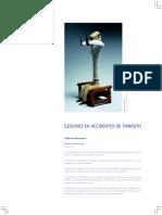 Lesionestransito(3).pdf2002