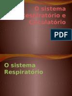 Docslide.com.Br o Sistema Respiratorio e Circulatorio