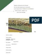 tejido epitelial (1)