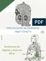 05 - Síndromes Vesícula Biliar e Hígado 2016