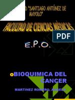 bioquimica-del-cancer1-1218061958761908-9