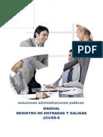 Manual Completo - Registro de Entradas y Salidas