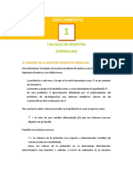 01_Documento_CalculoMuestra (1).pdf