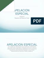 Apelacion-Especial-Penal.pptx