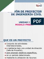Modelo PMBOK.pdf
