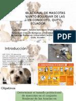 Censo Poblacional de Mascotas en El Conjunto Boluevar