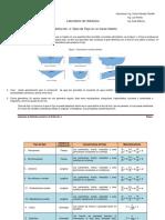 Instructivo_Práctica_No._4_Tipos_de_Flujo_en_Canales_Abiertos_2017.pdf