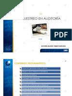 muestra auditoria.pdf