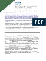 Modelo Para Otorgar Poder de Representacion (2)