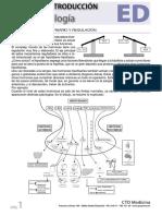 Introduccion Endocrino Cto.pdf
