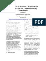 Metalografía de Aceros Al Carbono en Sus Estados de Recocido_1