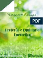Proteção-e-Equilibrio-Energético-Tratamento-Coringa.pdf