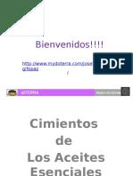 cimientosdelosaceitesesenciales-140908144641-phpapp02