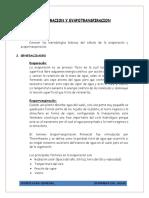 TEORIA-EVAPORIZACION (1).docx