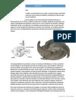 Curso UTN-COPIT- Toller Emiliano- Info Monografia M1-U2