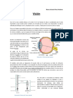 Practica Vision