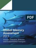 GlobalMercuryAssessment2013.pdf