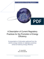 ICER Energy Efficiency Full Report_FINAL-Practicas Regulatorias Promocion EE 2010