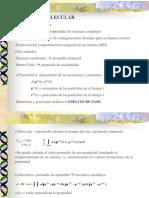 Dinamica Molecular
