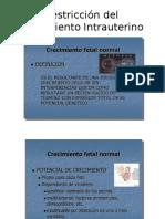 2.2 Restricción Del Crecimiento Intrauterino - PARTE 1