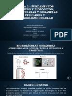 Tarea Dos Fundamentos Químicos y Biológicos