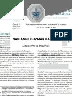 No Olvidar Hacerlo PDF