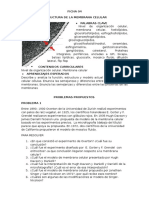 Ficha 4 Estructura de La Membrana Celular