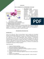 Ficha 5 Transporte a Traves de La Membrana Celular