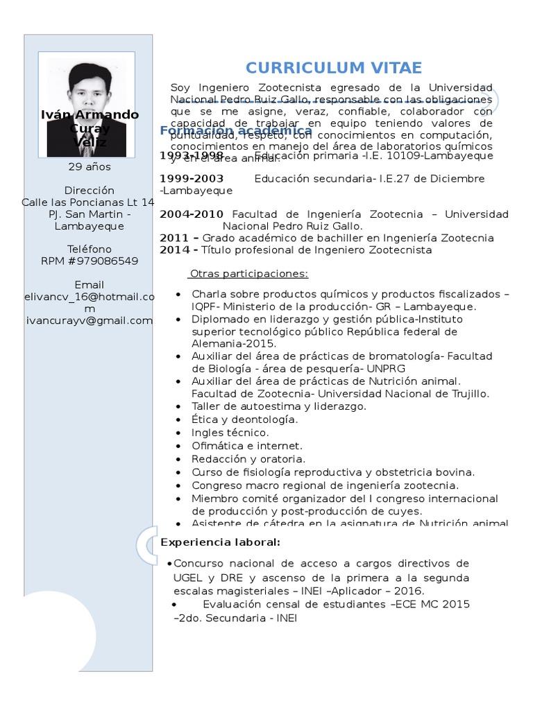 Contemporáneo Curriculum Vitae Plantilla Estudiante De Ingeniería ...