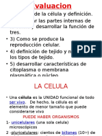 b - Power Point Biologia