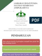 Referat Bno Ivp Lithiasis