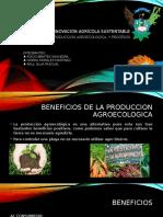 Beneficios de la produccion agroecologica y procesos agroecologicos
