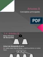Arboles B.pptx